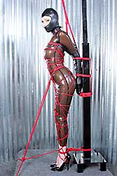 Ashley Renee in cathouse latex catsuit tied up